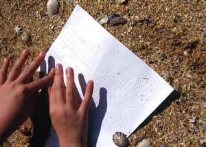 braille-beach